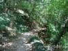 solnechnaja-tropa-26